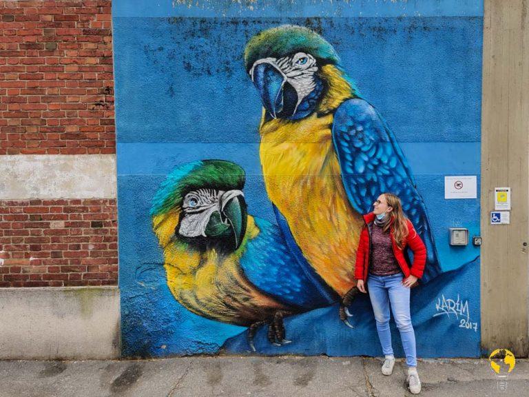 arte urbana Torino